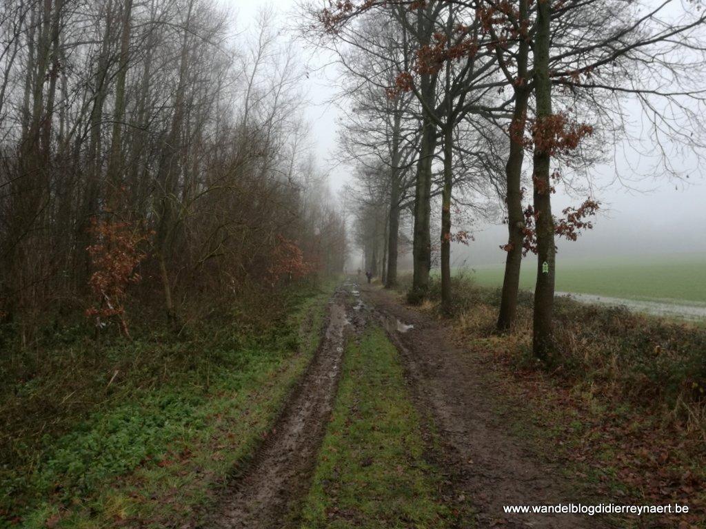 20 december 2017: Leeuwergem (21 km)