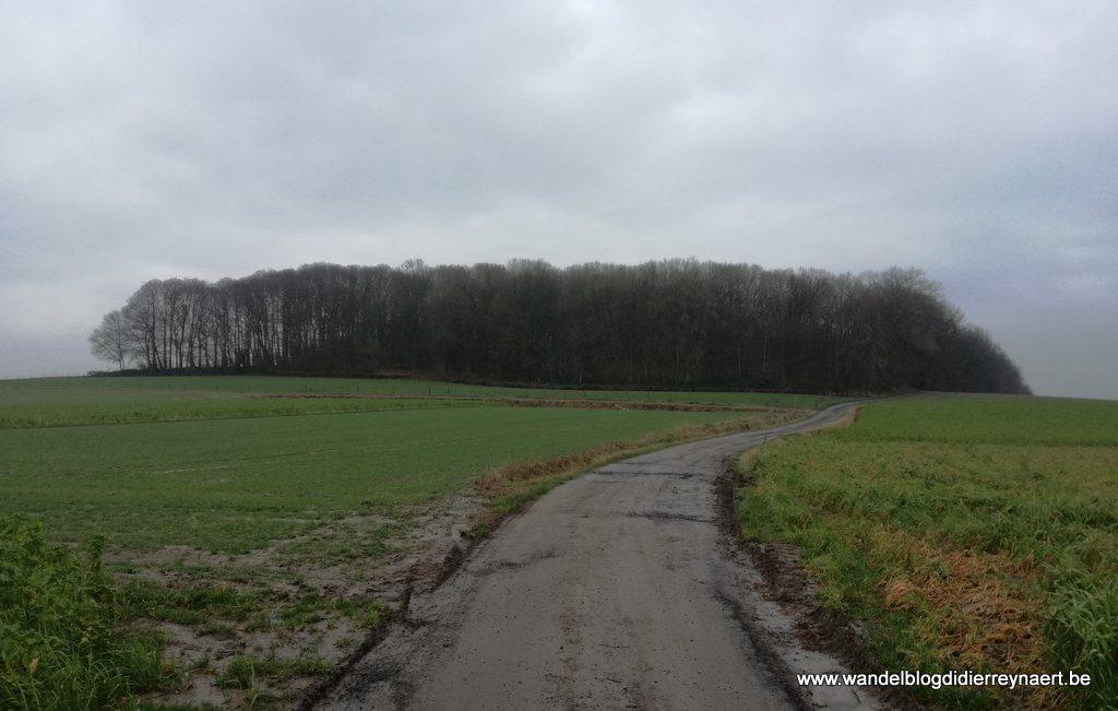 Grandvalbos tussen Sint-Denijs en Kooigem