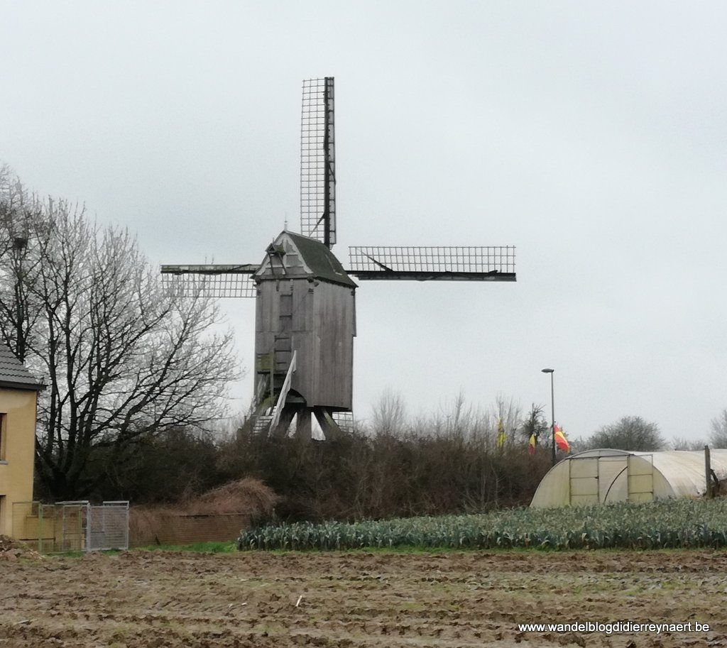 Buysemolen in Sint-Antelinks