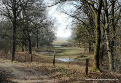 4 maart 2018: Hardenberg-Ommen (Nl) (22 km)