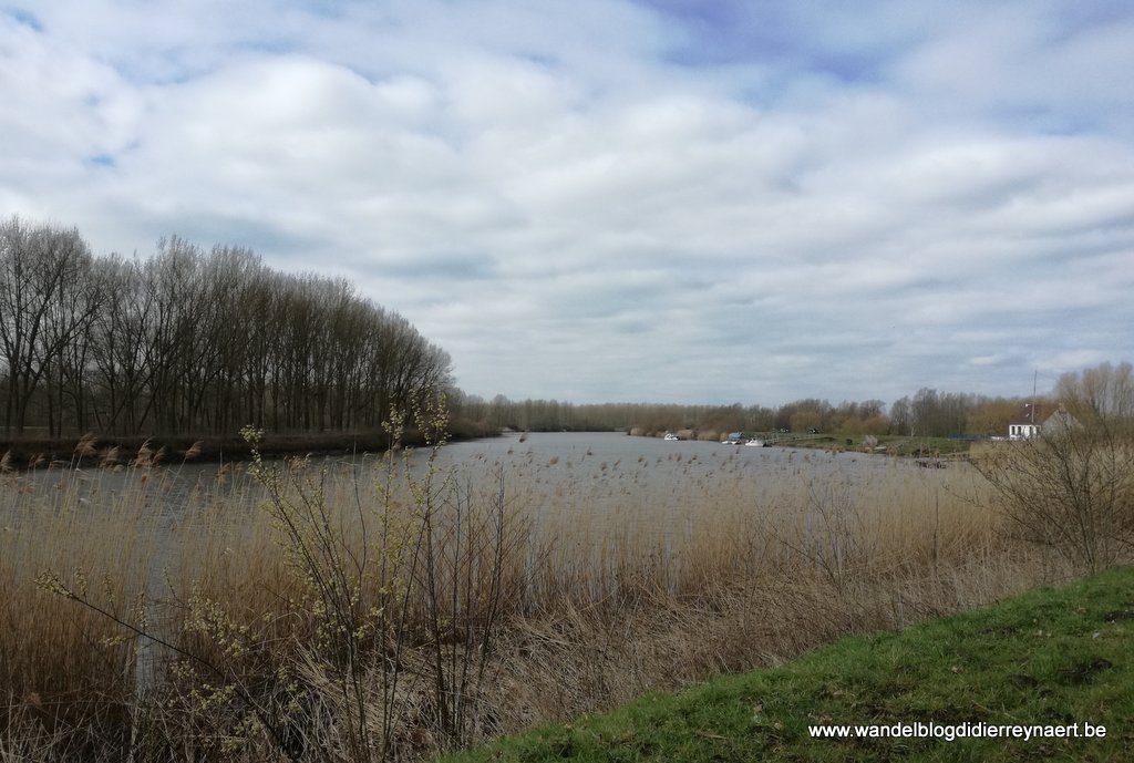 de Schelde tussen Moerzeke en Dendermonde