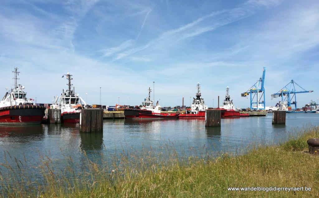 23 juni 2018: Zeebrugge (23 km)