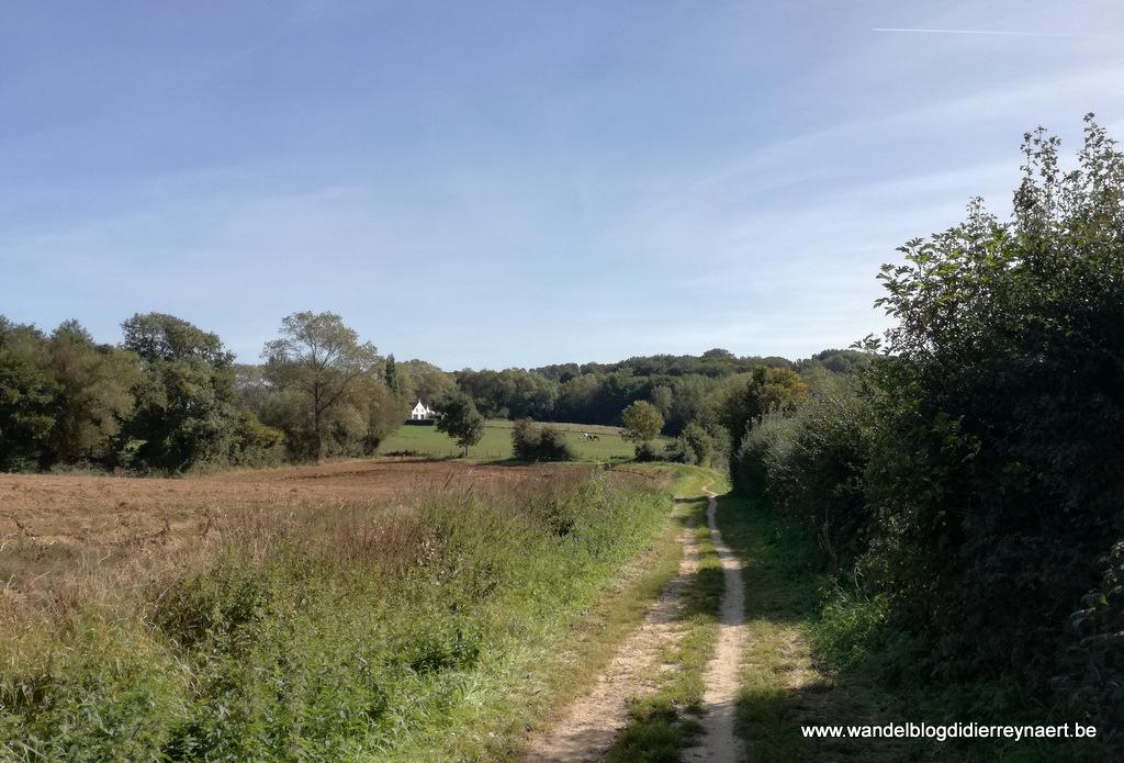 29 september 2018: Westouter (23 km)