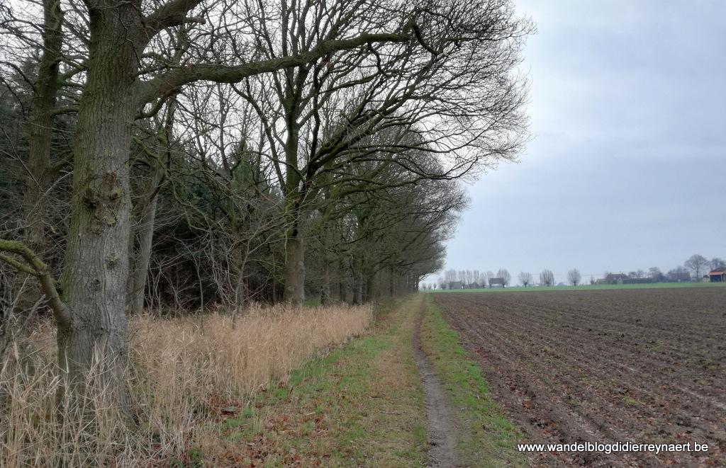 4 januari 2019: Bovekerke (22 km)