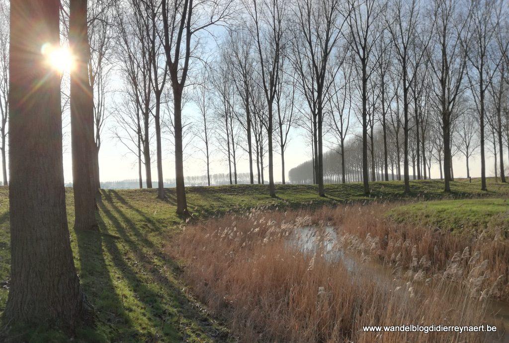 Fortdijk West