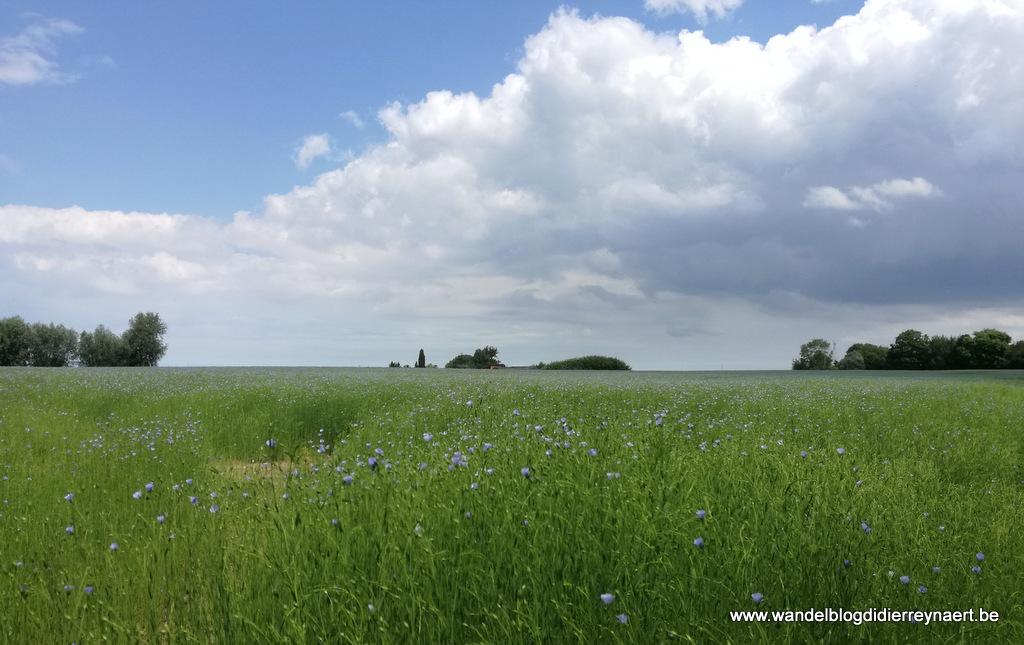 15 juni 2019: Wylder (Fr) (21 km)