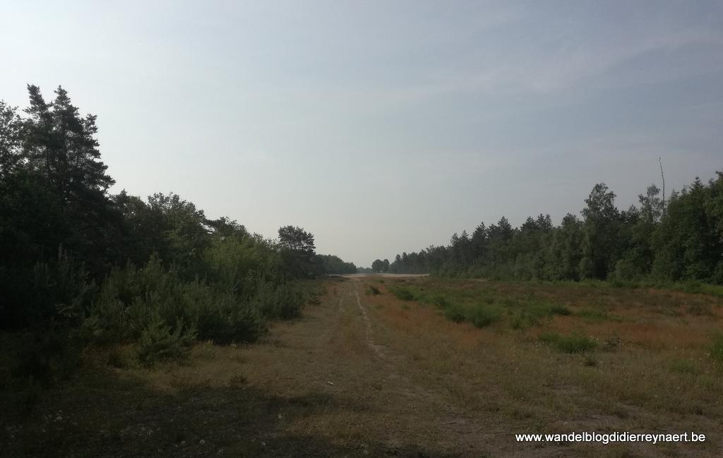 22 juni 2019: Sevenum (Nl) (23 km)