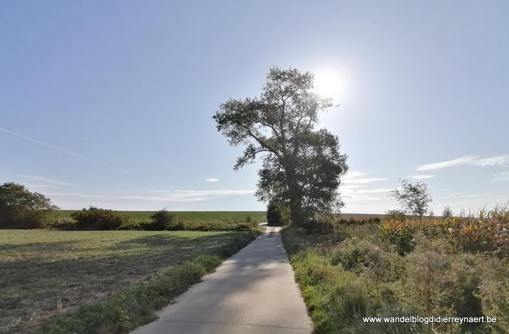22 september 2019: Vezon (Adeps) (20 km)