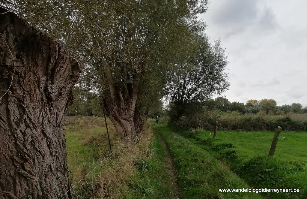 12 oktober 2019: Moorsel (22 km)