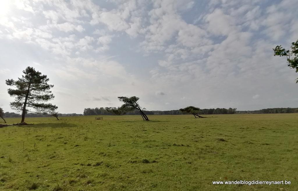 13 oktober 2019: Westkapelle (20 km)