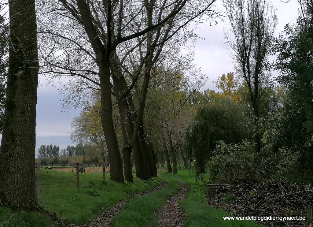 27 oktober 2019: Aarsele (24 km)
