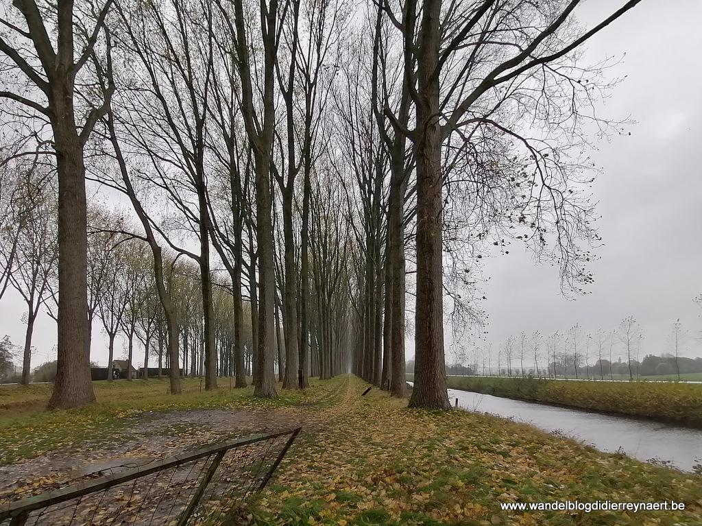 11 november 2019: Moerkerke (20 km)