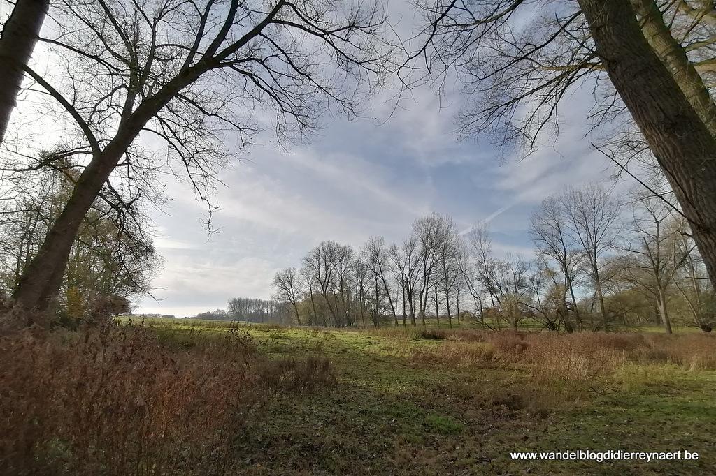 16 november 2019: Heldergem (20 km)