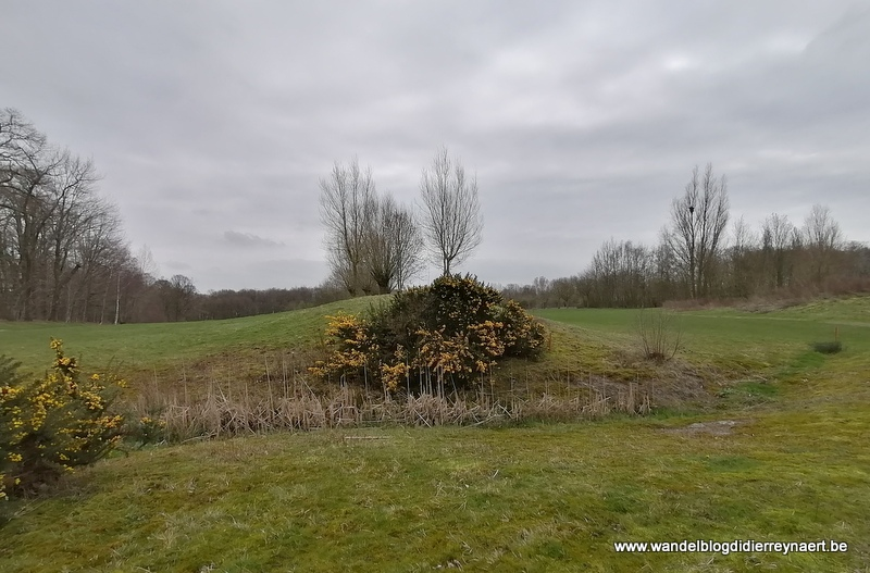 Wandelen in de Ieperboog: Gasthuisbossen en Palingbeek (16 maart 2020)