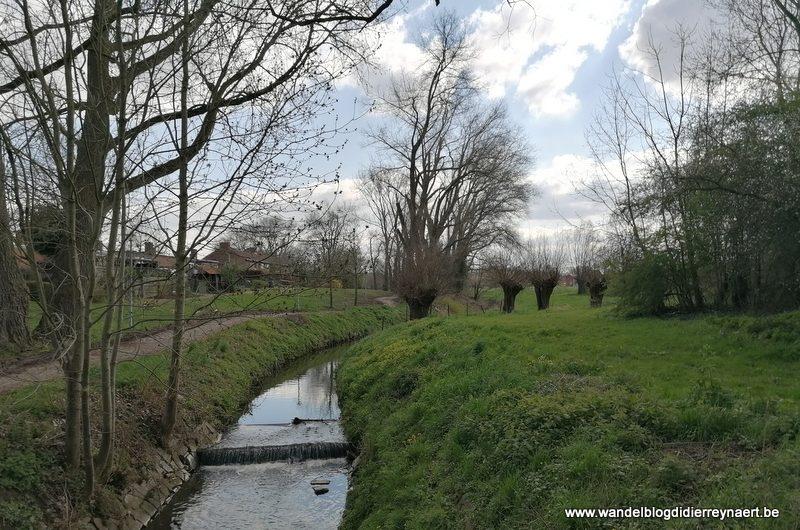 Vallei van de Markebeek en Preshoekbos (21 maart 2020)