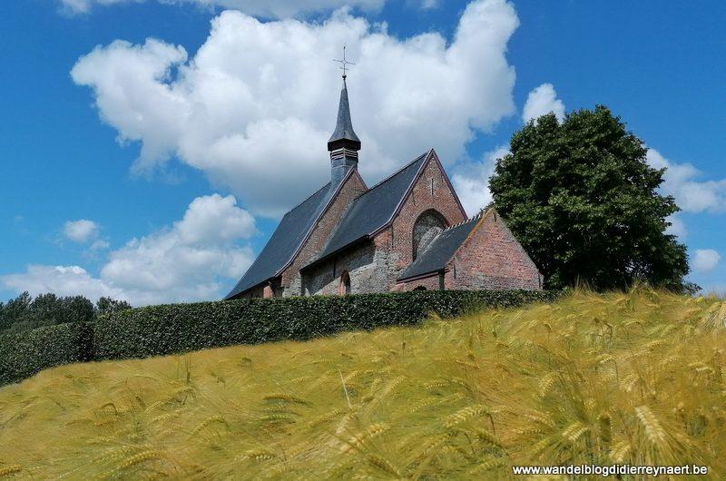 Door de Vlaamse Ardennen: Bossenare en de vallei van de Maarkebeek (7 juni 2020)