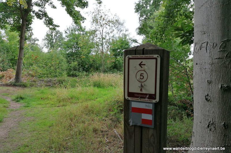 Landschapspark Bulskampveld: door bossen en dreven tussen Kruiskerke en Maria-Aalter (17 juli 2020)