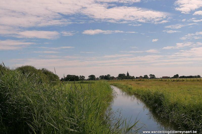 Wandelen door de polders ten zuiden van Lampernisse (23 juli 2020)