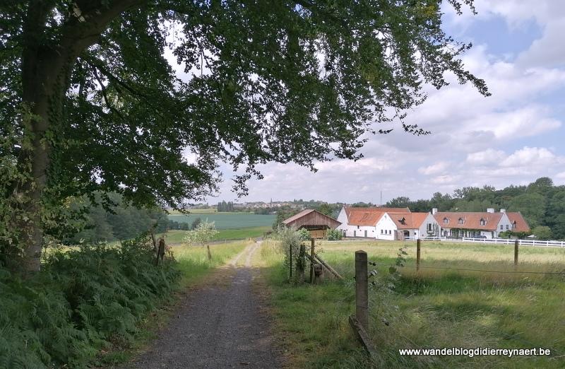 Het mooie, glooiende landschap ten zuiden van Kortrijk (2 augustus 2020)