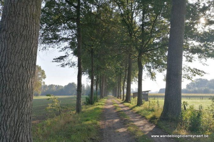 Over Grote Routepaden in de Brugse rand (15 september 2020)