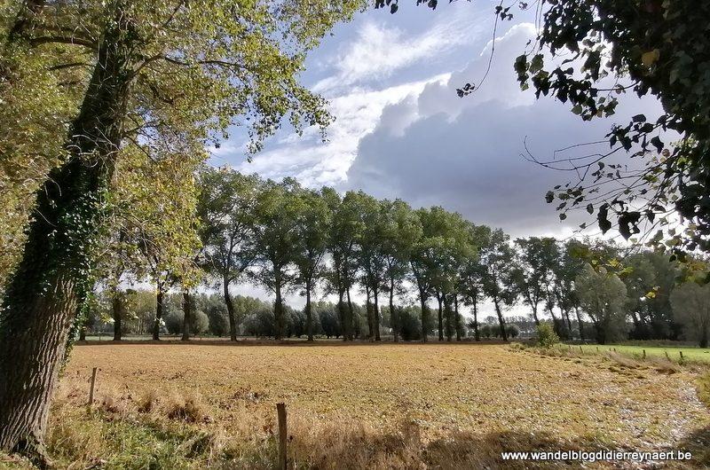 Door het Beverhoutsveld tussen Beernem, Oostkamp en Brugge (10 oktober 2020)