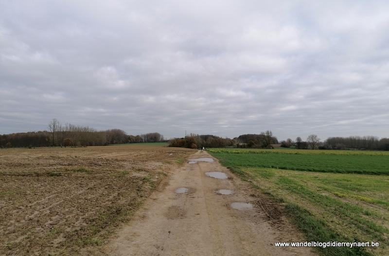Vanuit Balegem naar Hillegem en Oombergen (21 november 2020)