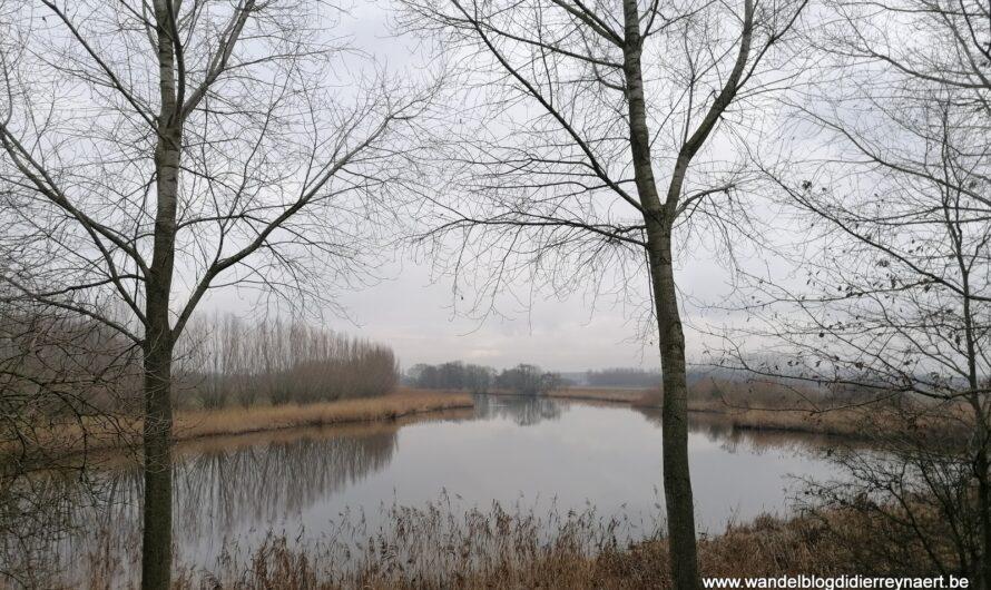 Wandelen in de grensstreek tussen Overslag en Koewacht (2 januari 2021)