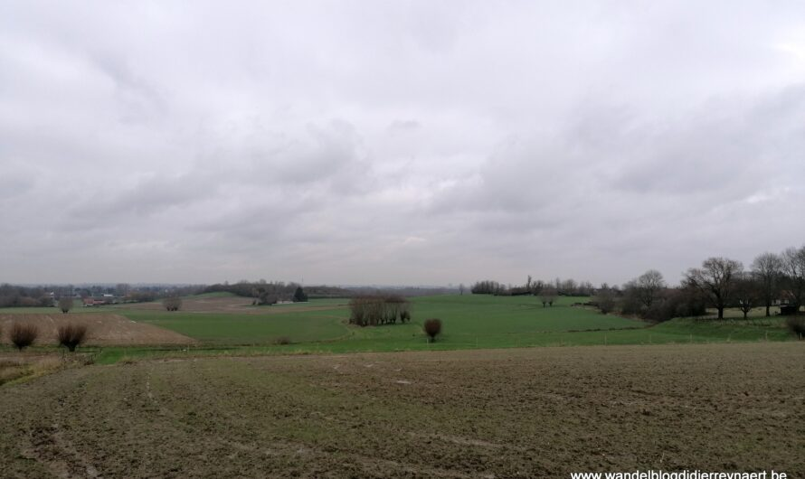 Door het glooiend landschap ten zuiden van Kortrijk (5 februari 2021)