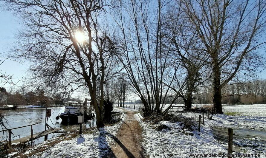 Vanuit Drongen: richting Landgoed de Campagne en Vinderhoutse bossen en langs de oevers van de Leie (13 februari 2021)