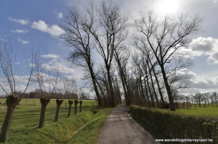 Door het Brugse Ommeland tussen Oedelem en Assebroek (27 maart 2021)