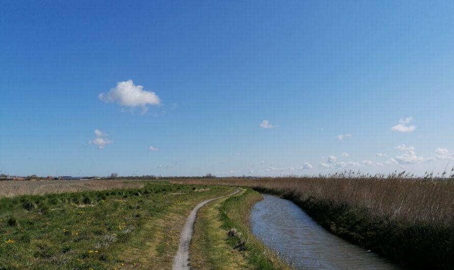 Door de polders van het Moere-Blote en het Nieuwland (17 april 2021)
