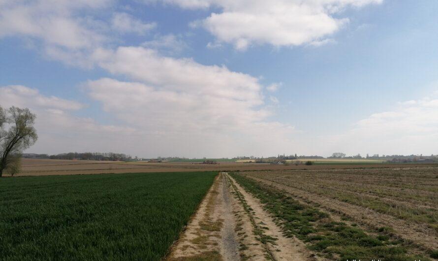 Wandelen via het wandelnetwerk in het Land van Mortagne (25 april 2021)