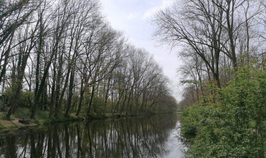 Langs het Ieperleekanaal tussen Drie Grachten en Boezinge (28 april 2021)