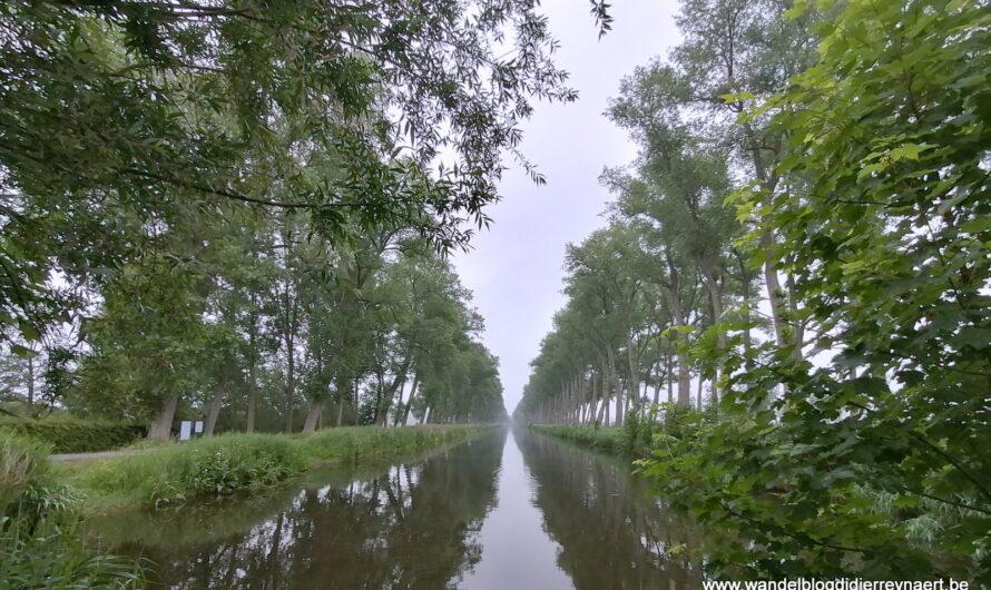 Wandelen over Grote Routepaden rond Damme (19 juni 2021)