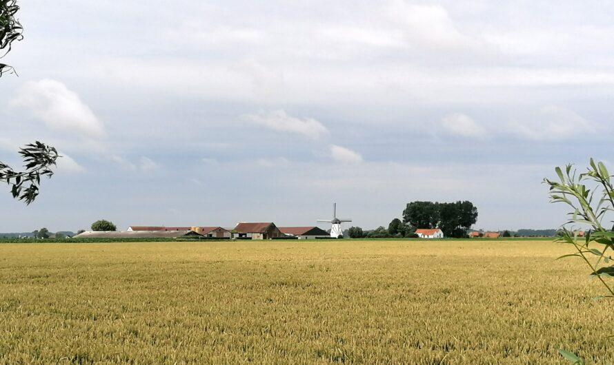 Door de Moeren, langs de Bergenvaart en een stukje GR5A (13 juli 2021)