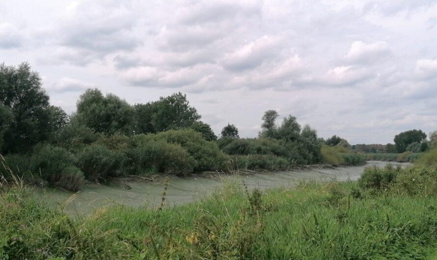 Wandelen in de Durmevallei vanuit Waasmunster (21 augustus 2021)