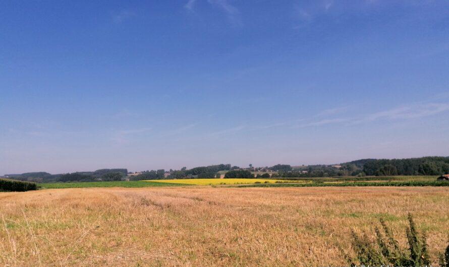 Vlaamse Ardennen rond Everbeek (7 september 2021)
